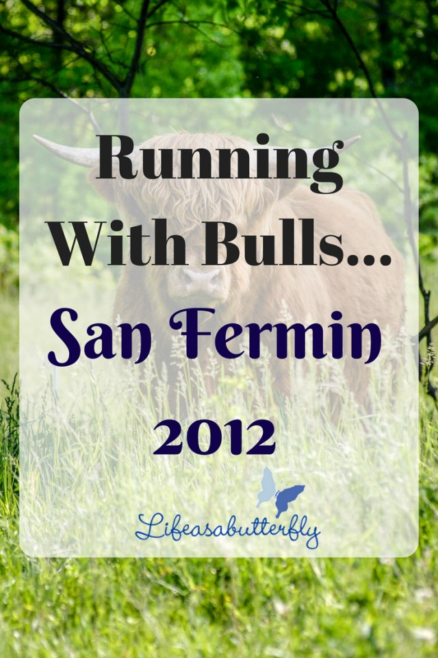 Running with bulls…San Fermin 2012
