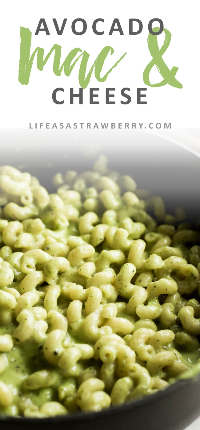 Avocado Mac and Cheese - This easy mac & cheese recipe gets a hit of extra creaminess from an easy avocado sauce! With plenty of white cheddar cheese for an easy avocado pasta recipe that's ready in thirty minutes. Vegetarian.