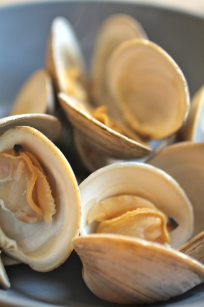 Steamed clams with open shells in a blue bowl.