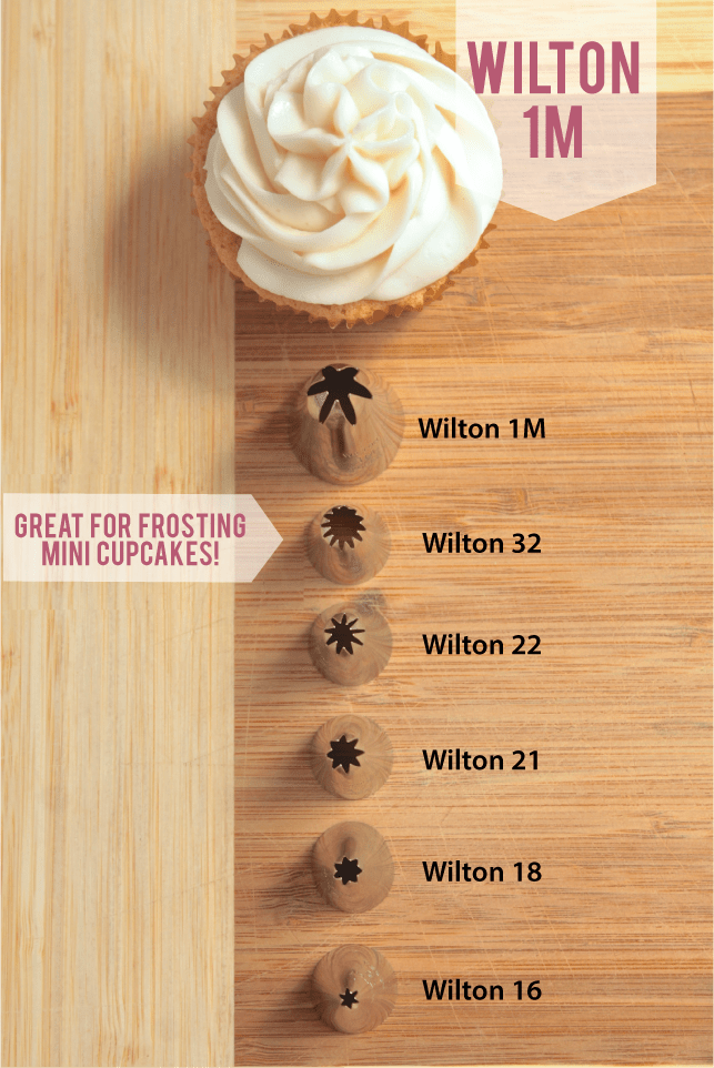 Vanilla cupcake on a wood surface next to a row of frosting tips of various sizes.