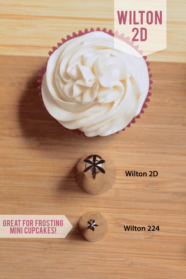 Vanilla cupcake next to a row of wilton frosting tips in various sizes.