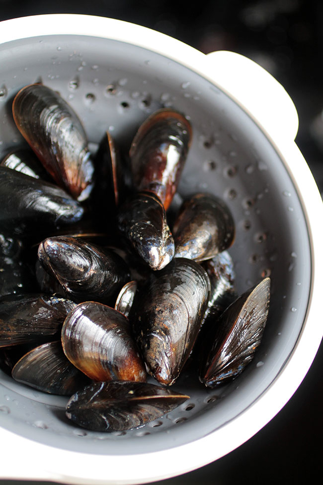 Fresh mussels for lemon chipotle mussels recipe