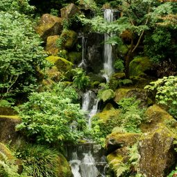 A large waterfall at Portland Japanese Gardens.