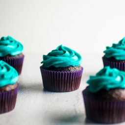 Chocolate cupcakes with blue frosting on a white background.