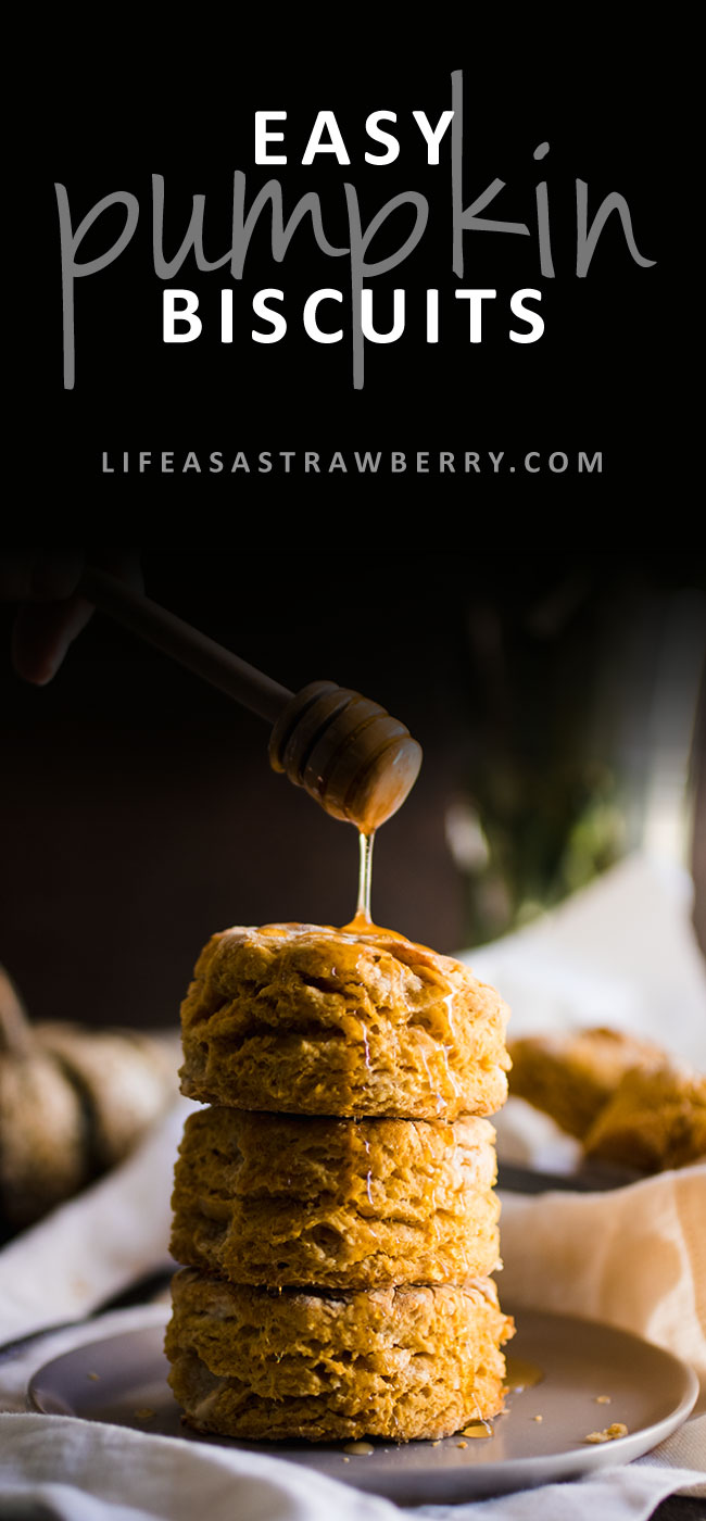 Easy Pumpkin Biscuits - This quick and simple pumpkin biscuit recipe is perfect for fall! Pumpkin puree, plenty of butter and a little bit of cinnamon create the perfect flaky, satisfying biscuit for breakfast or brunch. Vegetarian.