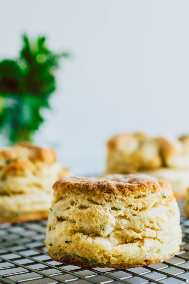 Side photograph of flakey herb biscuits on a wire cooling rack with a white background and fresh parsley in a vase in the background