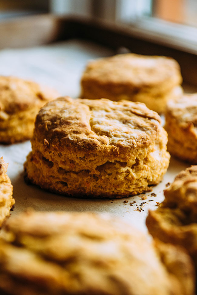 Side photo of sweet potato biscuits on a parchment paper lined baking sheet with a window in the background.