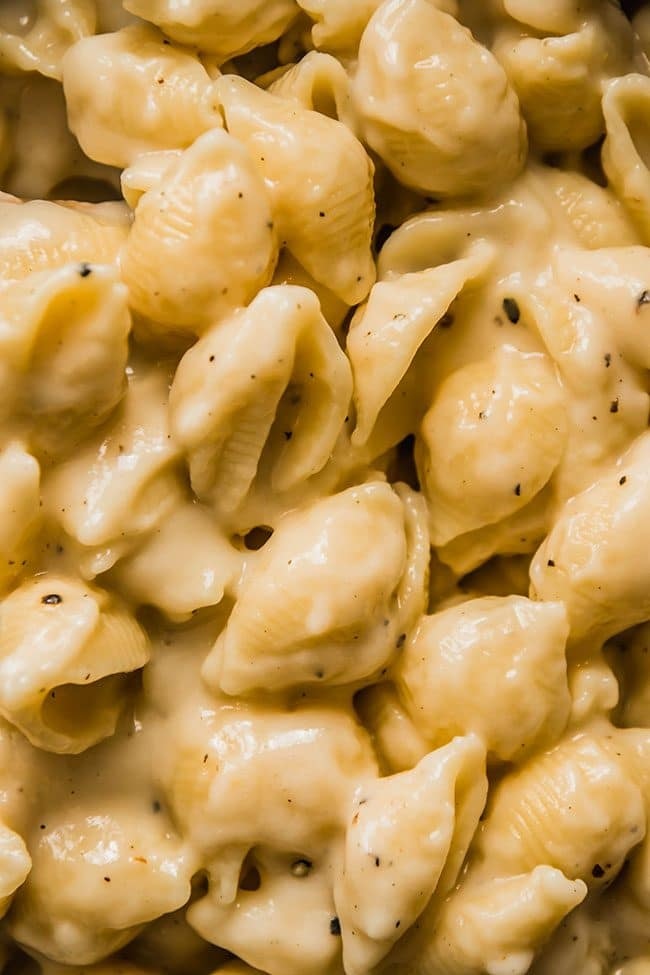 Shell pasta in a creamy cauliflower cheese sauce.