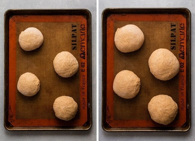 Bread bowls rising on a baking sheet.