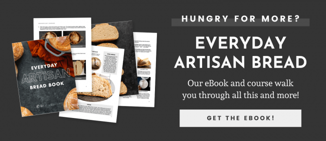 Our eBook and course walk you through all this and more. Click here to buy Everyday Artisan Bread!