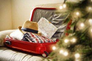 Christmas travel plans bushfires