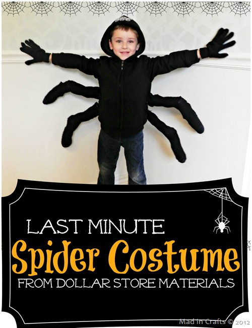 last-minute-spider-halloween-costume2