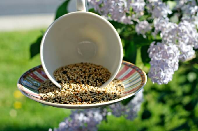 Tea Cup Bird Feeder ~ Transform a pretty cup and saucer into a whimsical bird feeder ~ Life Beyond the Kitchen