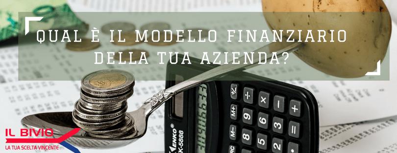 il MODELLO FINANZIARIO AZIENDA