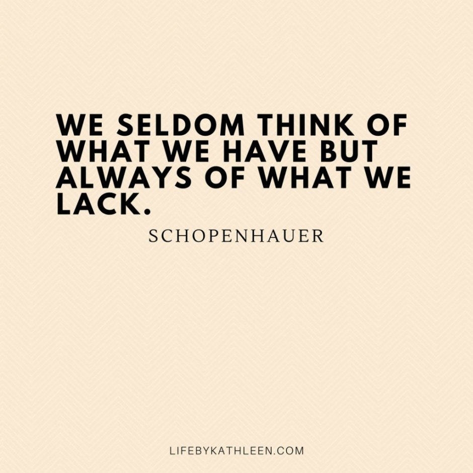 We seldom think of what we have but always of what we lack - Schopenhauer