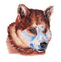 Wolf Watercolor Freepik