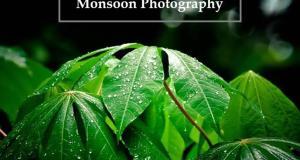 rain-photography