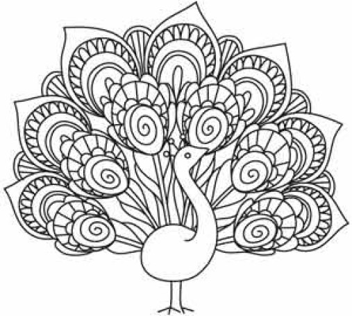 bird-embroidery