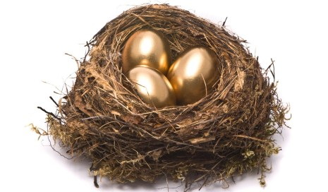 Image result for build a nest egg