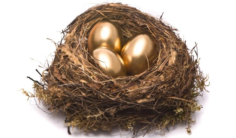 Image result for nest egg