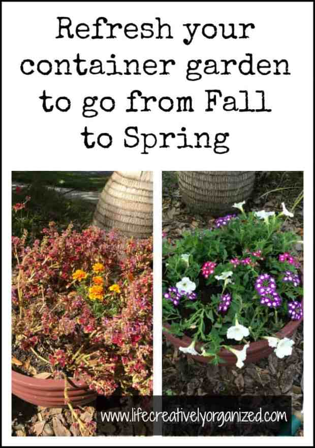Here is how to update a container garden. Is it time to switch out those tired Fall plants for some fresh Spring ones? Here are step by step instructions.
