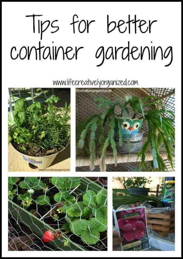 Tips for better container gardening - I love container gardening. After much trial & error with my plants, I have discovered some tips for better container gardening I'd like to share with you.