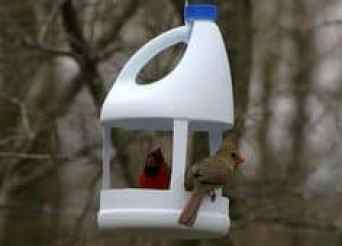 cheddar feeder s bird spring building shutterstock welcome scratch kitchen to feeders diy