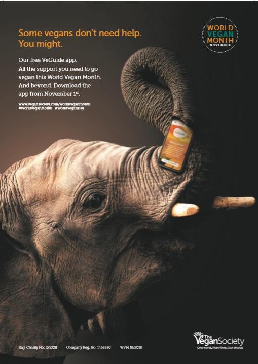 elephant wvm.jpg