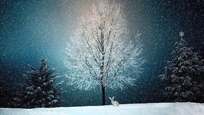 winter-2896970__340.jpg