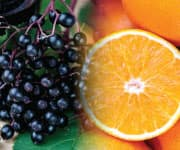 Elderberry and oranges for colds