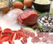 Foods that contain adenosylcobalamin