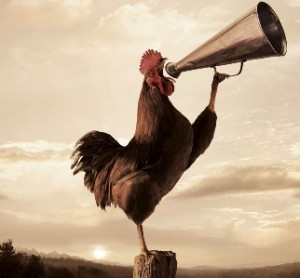 THE BEST BUT UNNOTICED INVENTION 5: THE ROOSTER CROW