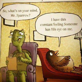 sparrow cartoon