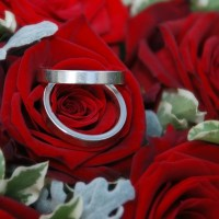 RINGS AND ROSES SERIES