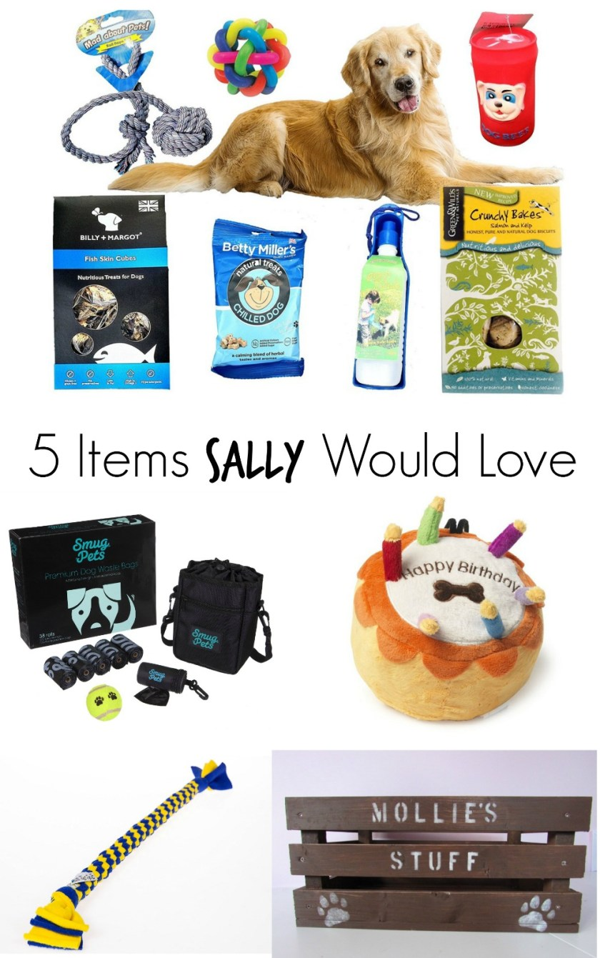 5 Items Sally Would Love