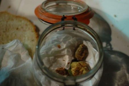 Abruzzo White Truffle