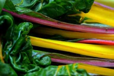 Swiss Chard for Navelli's Pot of Gold