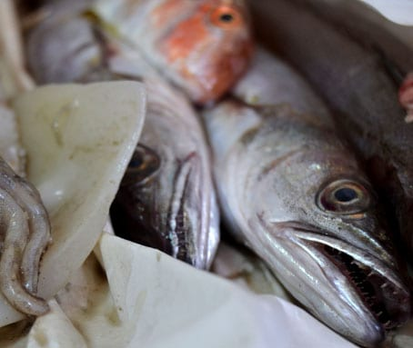 Fresh fish for a cookery lesson aboard a trabocco