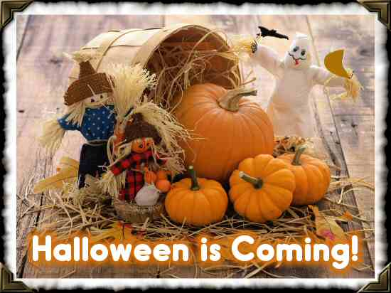 Back to School, Fall Season, and Halloween – Are You Ready?