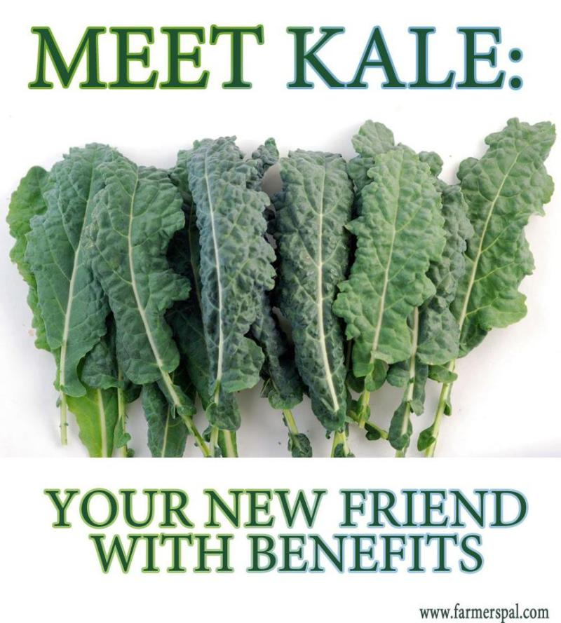 What's Leafy, Green and Has Its Own Holiday? Kale!