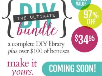 The 2015 Ultimate DIY Guide