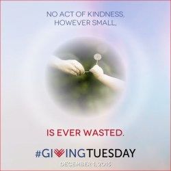 No act of kindness, however small, is ever wasted.
