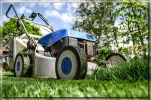 4 Must Have Features for Your Next Lawn Mower