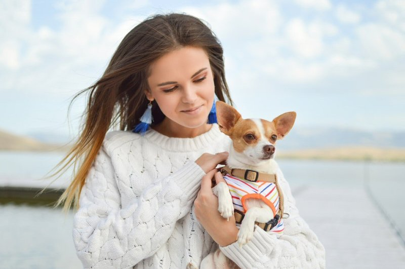 Dogs Can Reduce Your Stress Levels
