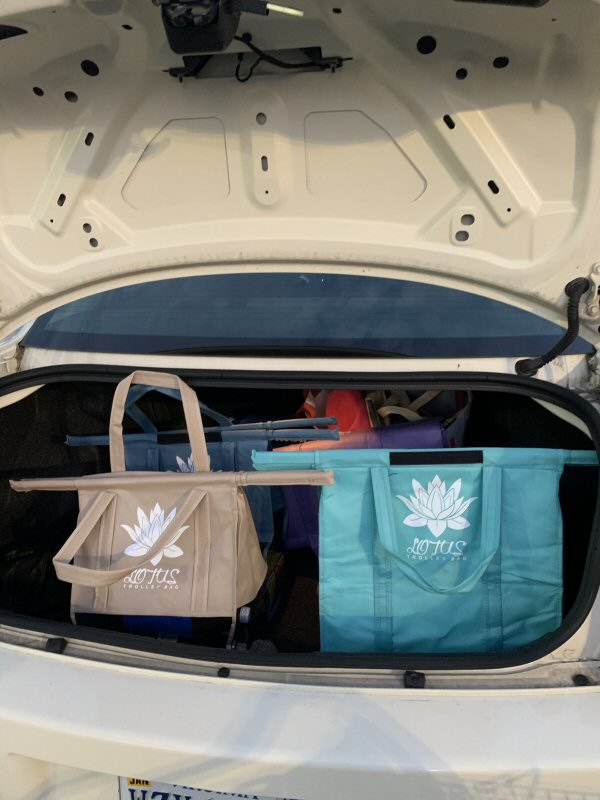 Separate and Fit Perfectly in the Trunk - Lotus Trolley Bag