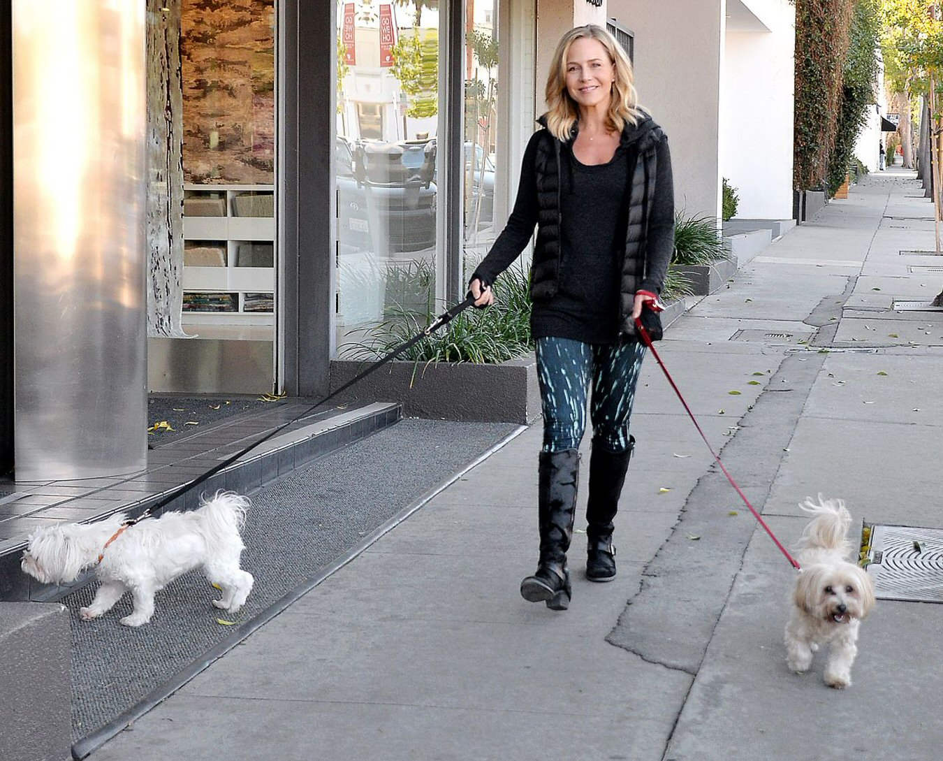 Julie Benz walking her dogs in West Hollywood