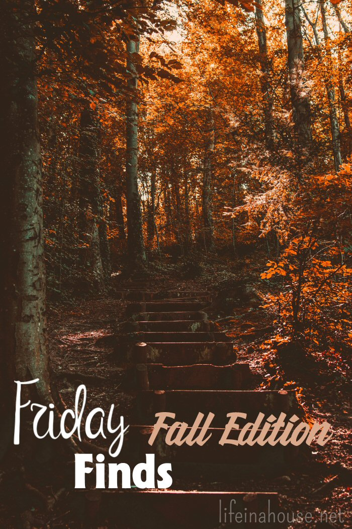 friday finds fall edition