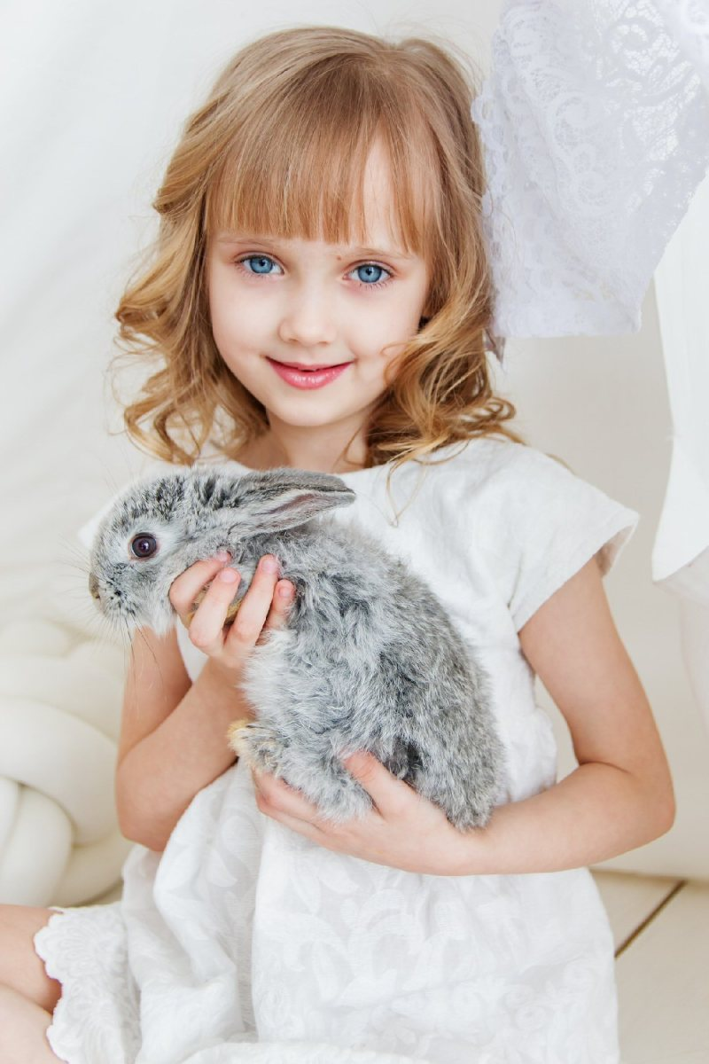rabbits make great pets