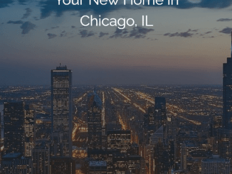 zumper home in chicago