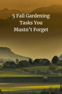 5 fall gardening tasks